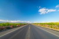 公路征地賠償標準