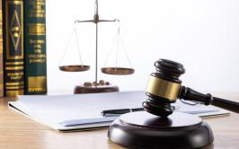 诉讼离婚司法鉴定费多少